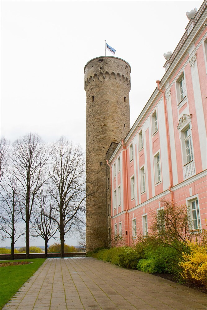 Tall Herman, the tallest tower of Tallin's medieval wall